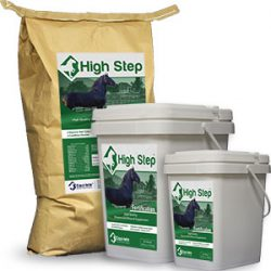 Equi-lete High Step